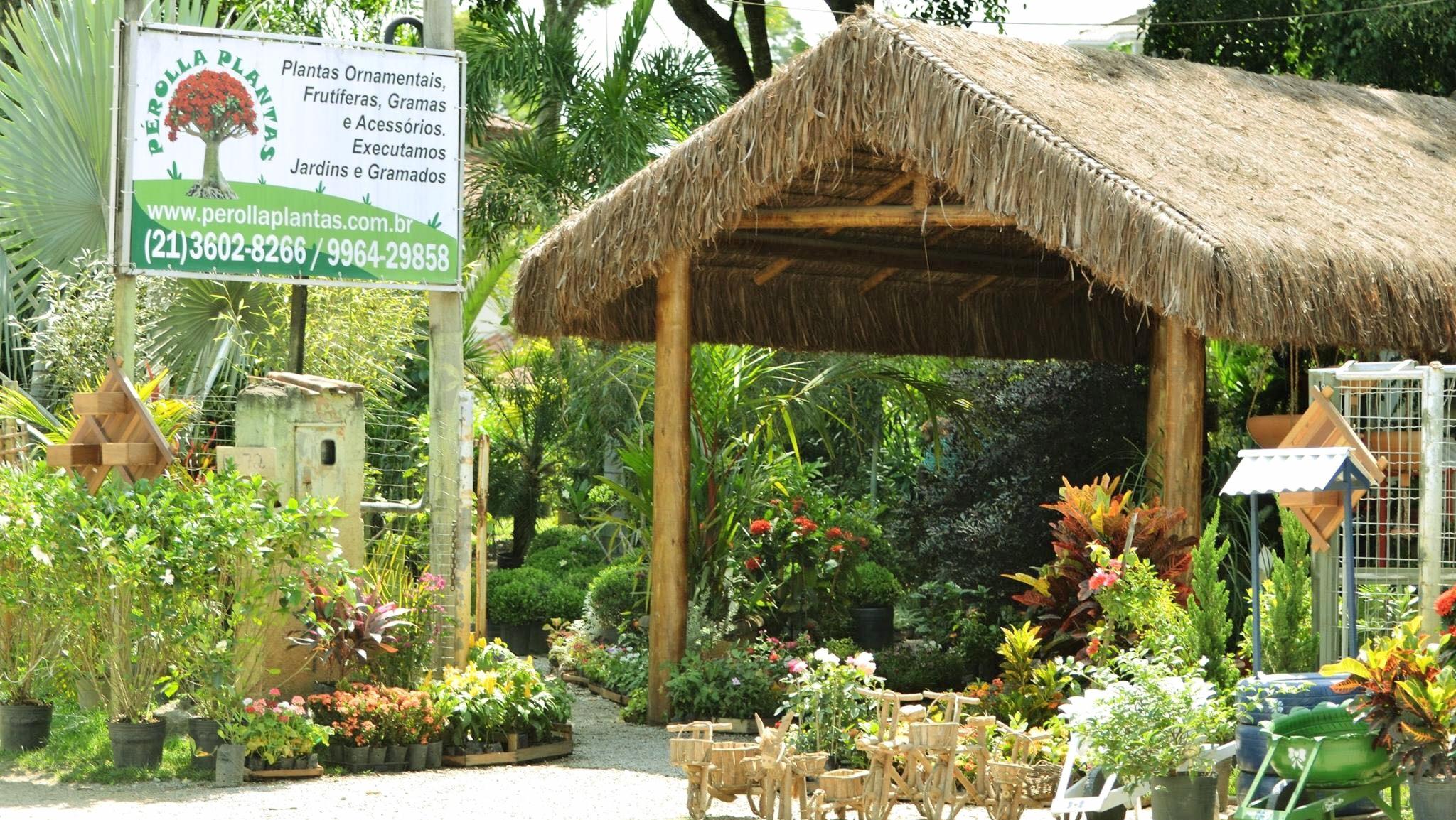 Jardinagem em itaipu Perolla Plantas